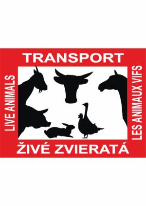 Transport živých zvířat
